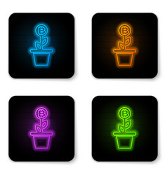 glowing neon bitcoin plant in pot icon vector image