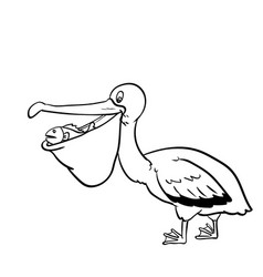 Isolated pelican cartoon- hand drawn vector