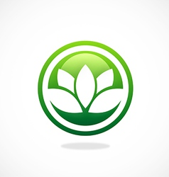 Lotus flower spa icon logo vector