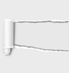 Oblong snatched hole in white sheet paper vector