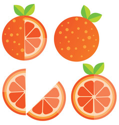 oranges orange slice half cut orange and front vector image