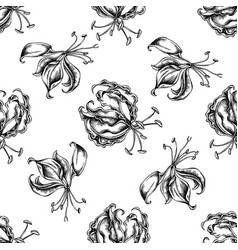 seamless pattern with black and white gloriosa vector image