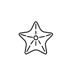 Starfish sea life summer icon line vector