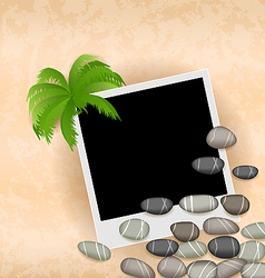 Photo frame background with stones and palm vector image vector image