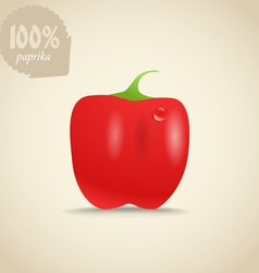 Cute fresh red paprica vector image