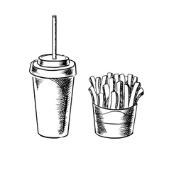 French fries and cold soda drink sketches vector image vector image