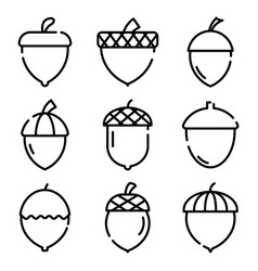 Acorn icons set outline style vector