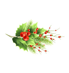 Christmas plants branches realistic vector