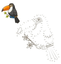 Draw animal toucan educational game vector