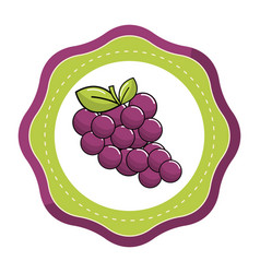 emblem sticker grapes fruit icon image vector image