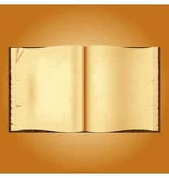 Old open book Yellowed pages wrinkled vector