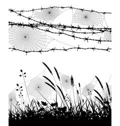 orb spider webs vector image