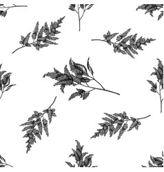 seamless pattern with black and white astilbe vector image