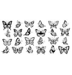 Set filigree butterflies vector