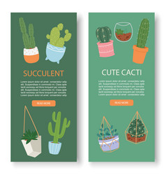 succulents and cactus vertical botanical vector image