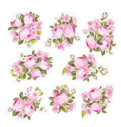 vintage flowers set over white background wedding vector image