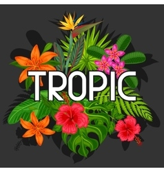 Background with stylized tropical plants leaves vector image