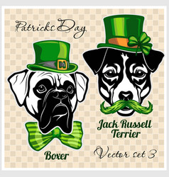 Boxer and jack russell terrier - dog heads and vector