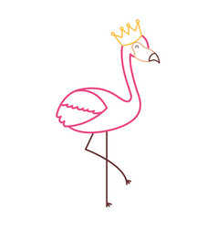 Flamingo crown bird exotic image vector