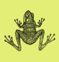 Frog abstract artistic lines vector