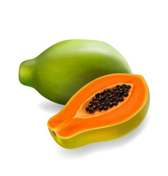 Papaya fruit realistic vector
