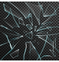 Realistic shards of transparent broken glass vector