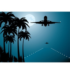 palms moon and plane vector image
