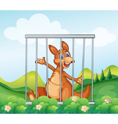 A kangaroo inside a cage vector image