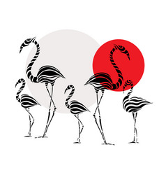 abstract silhouettes pink flamingo vector image