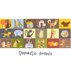 cute funny domestic animals characters set cat vector image