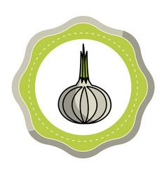 Emblem sticker fresh onion vegetable icon vector