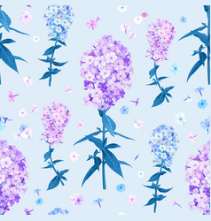 flox flower seamless pattern vector image