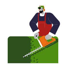 Gardener shaping or cutting bushes in garden vector
