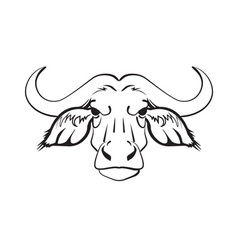 head of the African buffalo vector image