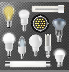 Incandescent lamps light bulbs fluorescent energy vector