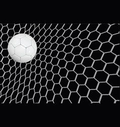 Realistic soccer ball or football ball in vector