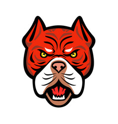 Red tiger bulldog head front mascot vector