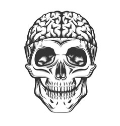 Skull with open brain vector
