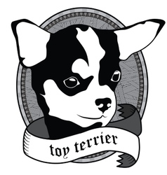 Toy terrier Portrait Isolated dog vector