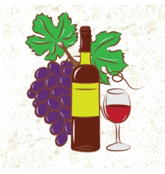 vine and grapes colored vector image vector image