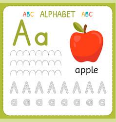 Alphabet tracing worksheet for preschool and vector