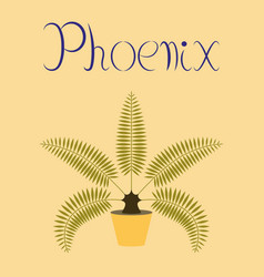flat on background natural phoenix vector image