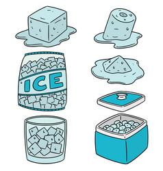 Set of ice vector