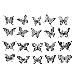 Set of twenty butterflies vector image