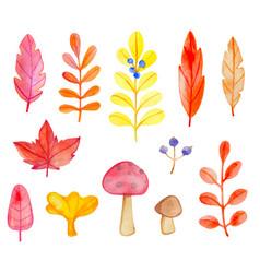 set watercolor leaves and mushrooms vector image