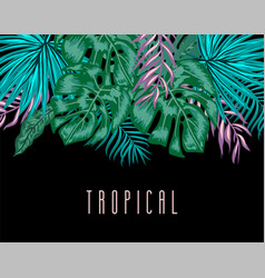 tropical background with exotic palm leaves and vector image