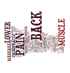 z lower back muscle pain text background word vector image