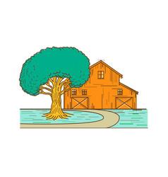 American barn oak tree mono line color vector