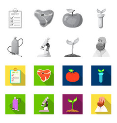 and icon set of and ve vector image