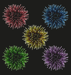 Fireworks set on a black background vector